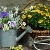 庭造りdiy初心者におすすめの材料、デザインはこれ!
