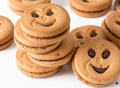 お から クッキー 太る